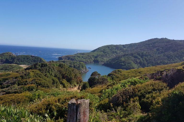 trekking Duhatao - Chepu Chiloe