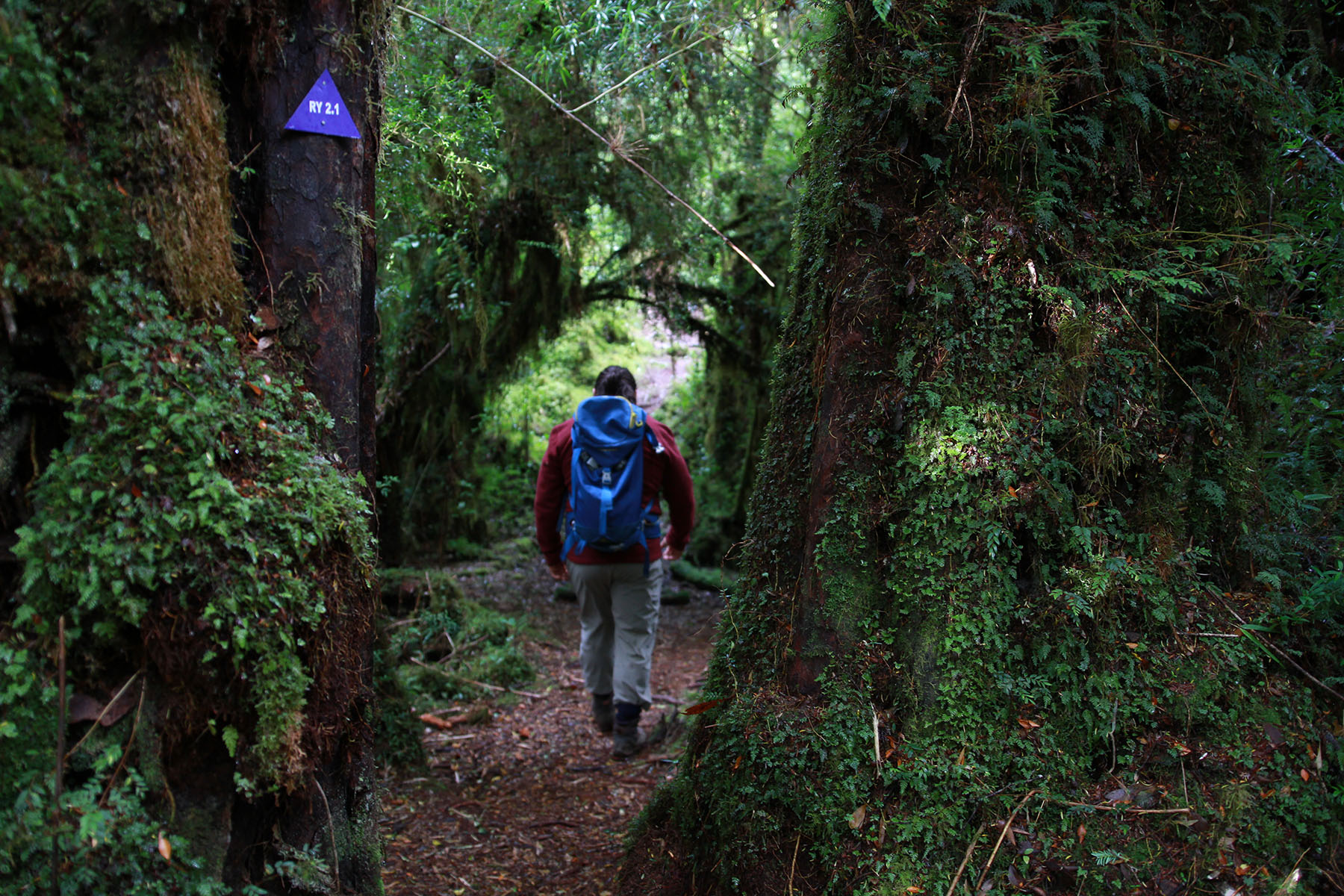 chiloe climate, weather in Chile and packing list