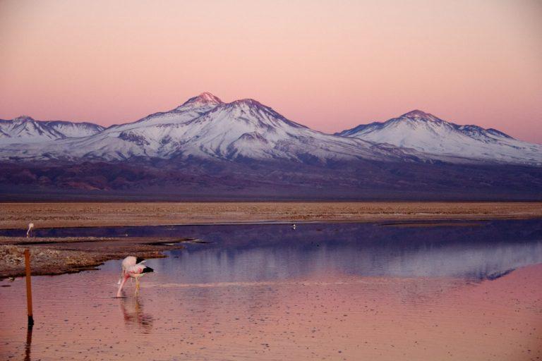 Tierra Atacama_desert excursions0